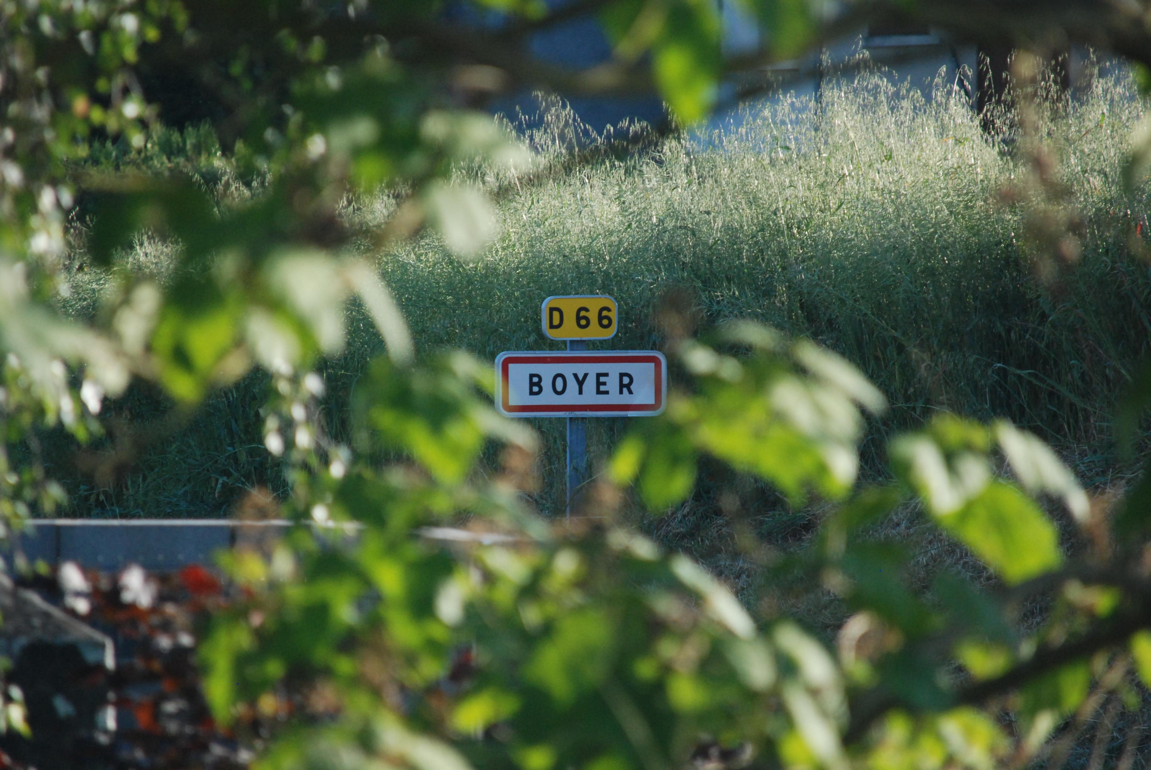 7 Flou fleuri B.SUEUR Boyer